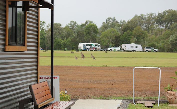 Goomeri Caravan and Bush Camp 4